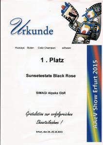 Erfolge2015-11
