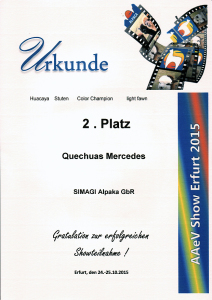 Erfolge2015-16