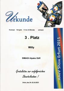 Erfolge2015-29
