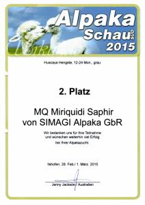 Erfolge2015-32