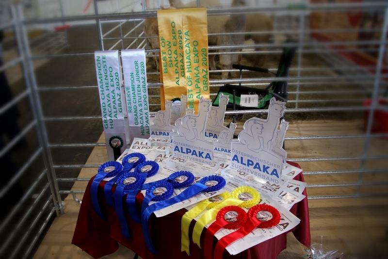 Alpaka Expo Graz Östereich 2020